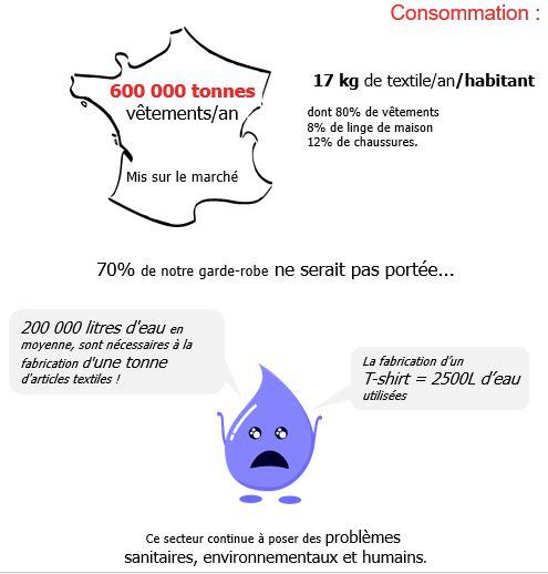 Consommation vêtements en France, Textile Linge Chaussures